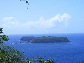Les Tantes islands, Grenadines