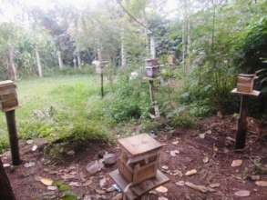 The new apiary built for native stingless bees
