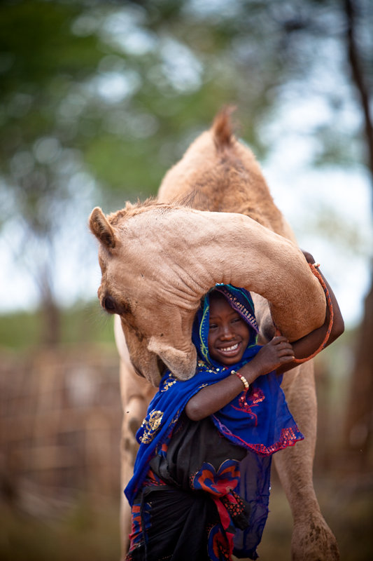 Buy a Camel, Help Combat Poverty