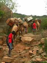 some terrain from our Camel Mobile trek