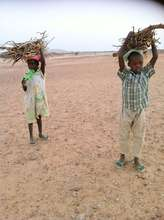 Children Collecting Firewood