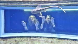 Visitors having fun at the Israel Aquarium