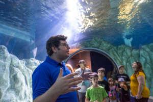 Summer at the Aquarium