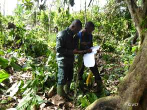 Eco-guards surveying Cavally Classified Forest