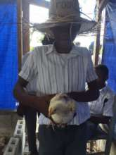 Kinsley holds one of the chickens for the festival