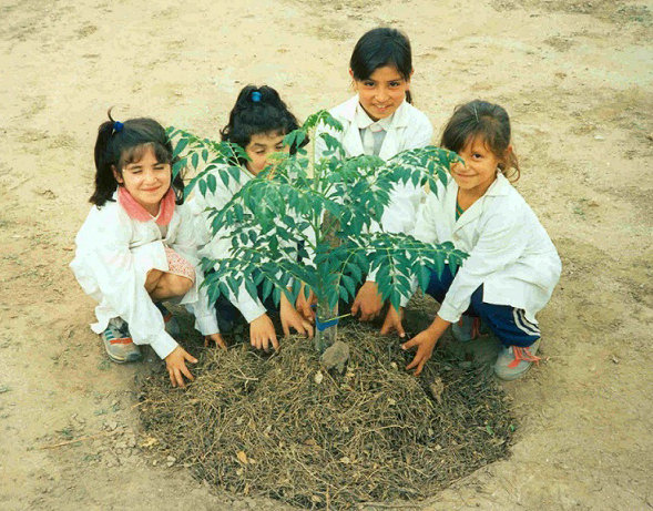 Environmental education for children in Argentina