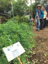 Biodiversity is key with community involvement!
