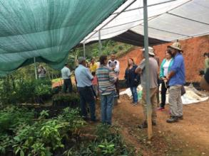 Community produces biodiverse trees 100 species