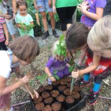 Children giving baby trees a helping hand