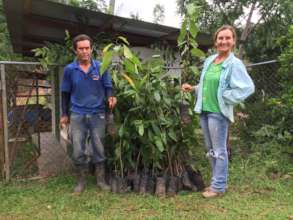 Delivery diverse trees produced by community