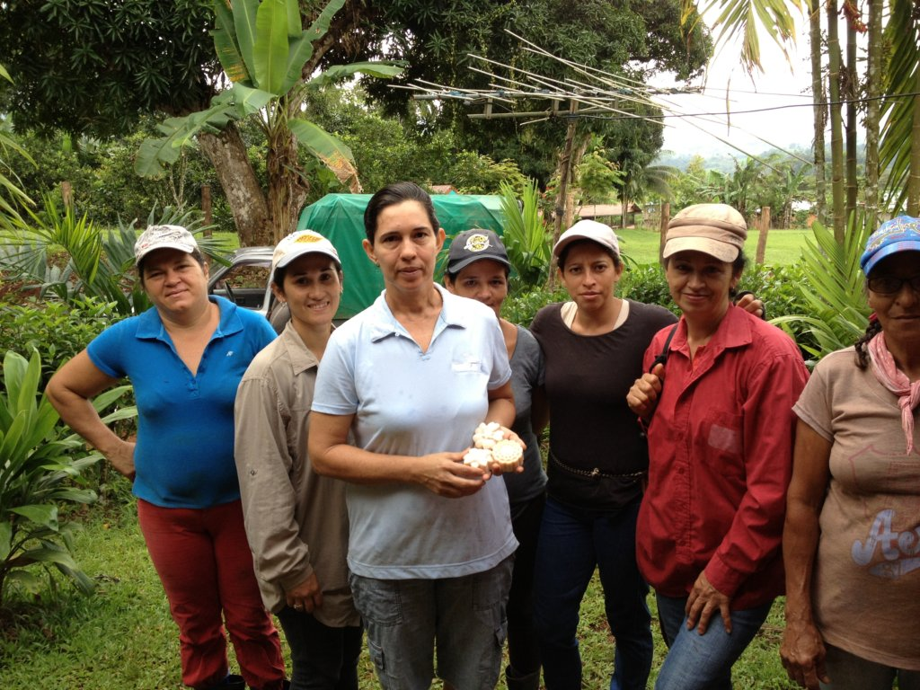Plant 30,000 native trees Costa Rican owned farms