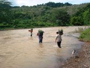 Riverside Reforestation Work
