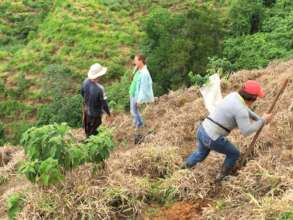 Planting trees with fairly paid men and women