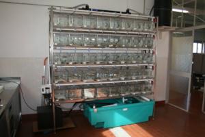Captive breeding facilities