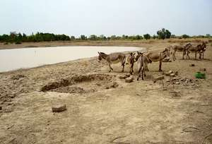 Catchment basins create employment opportunities