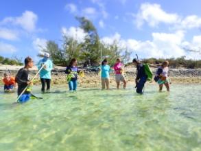 Teen volunteers on the lookout for turtles