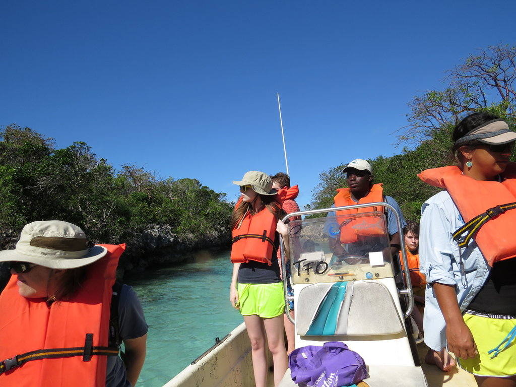 Earthwatch's Tracking Sea Turtles in the Bahamas
