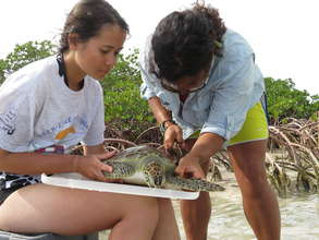 Students help conduct research in the Bahamas.