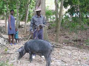 Family with Pig