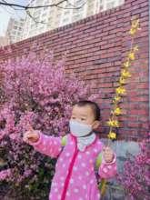 Harmony enjoying Korea's spring flower blooms