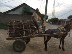 Firewood Delivery in Nagarote