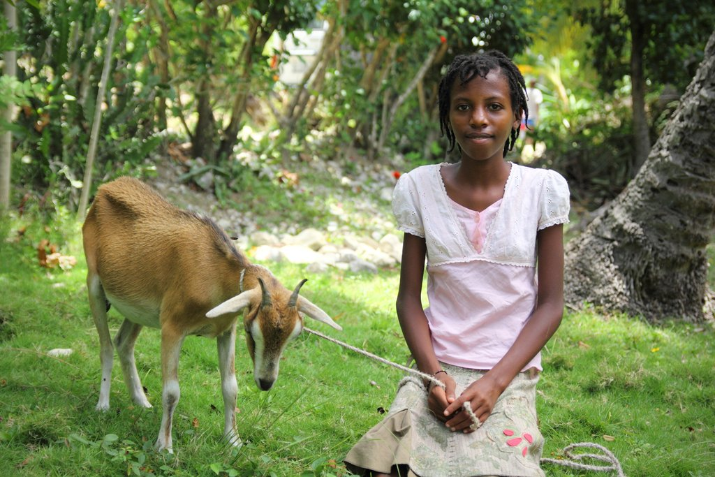 Give a Girl a Goat, Keep Her in School