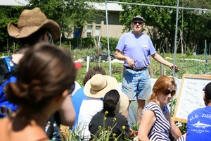 Free small scale gardening workshop