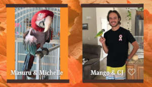 MASURU AND MANGO HAVE NEW FAMILIES THANKS TO YOU!