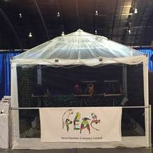 Parrot Tent at the America's Family Pet Expo