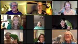 PEAC VOLUNTEERS MEETING ON ZOOM WITH OUR PARROTS