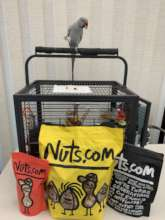 SKYE LOVES HIS DONATED NUTS - THANK YOU!