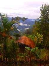 Looking across the land from Jimi-Molu