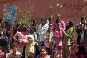 HAF Plants its 1 Millionth Tree!