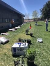 Edgewater Elementary Pollinlator Bed Install Day