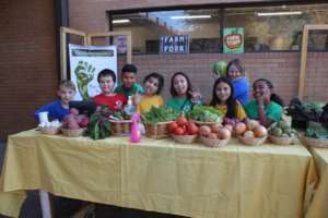 Give Healthy Food to 462 Colorado Families in Need