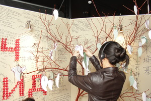 Hanging reflections on the AIDS Xperience tree