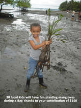 Happy local child in mangrove reforestation