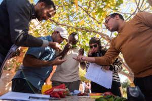 Participants discussing biodiversity inventories