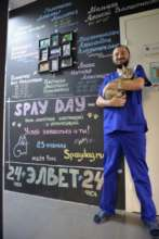 Veterinarians at the time of Spay Day