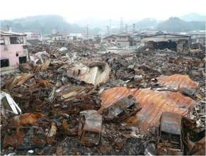 Damage caused by the Great East Japan Earthquake