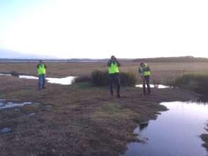 Volunteer team looking for wombats