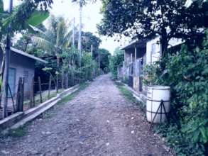 Empty streets, no transportation, no pedestrians