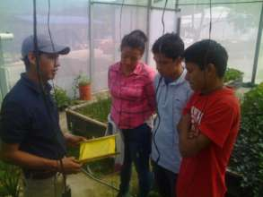 Our tech-teacher Martin working on insect control