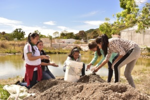 Preparing greenhouse soil- real science apps