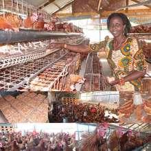Mgeni a livestock promotor in Tanzania