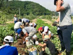 Working with local farmer to find potatoes