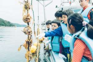 Fishery experience