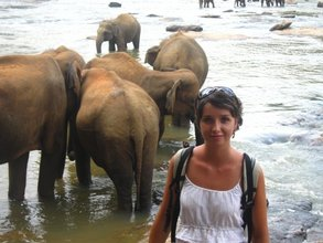 Veronika at the Elephants' Orphanage
