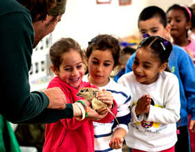 Summer Educational Activities at the Zoo