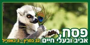 Spring fun and learning at the Jerusalem Zoo